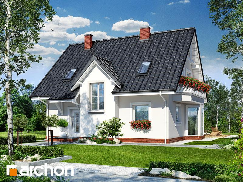 gotowy projekt Dom w zawilcach widok 1