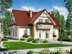 projekt Dom w fiołkach lustrzane odbicie 1