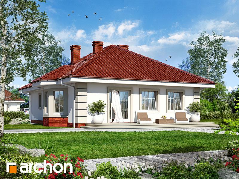 gotowy projekt Dom nad stawem widok 1