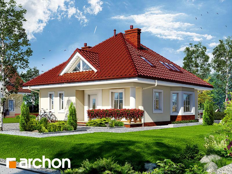 gotowy projekt Dom w bluszczu widok 1