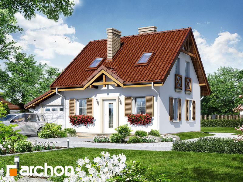 gotowy projekt Dom w borówkach (G) widok 1