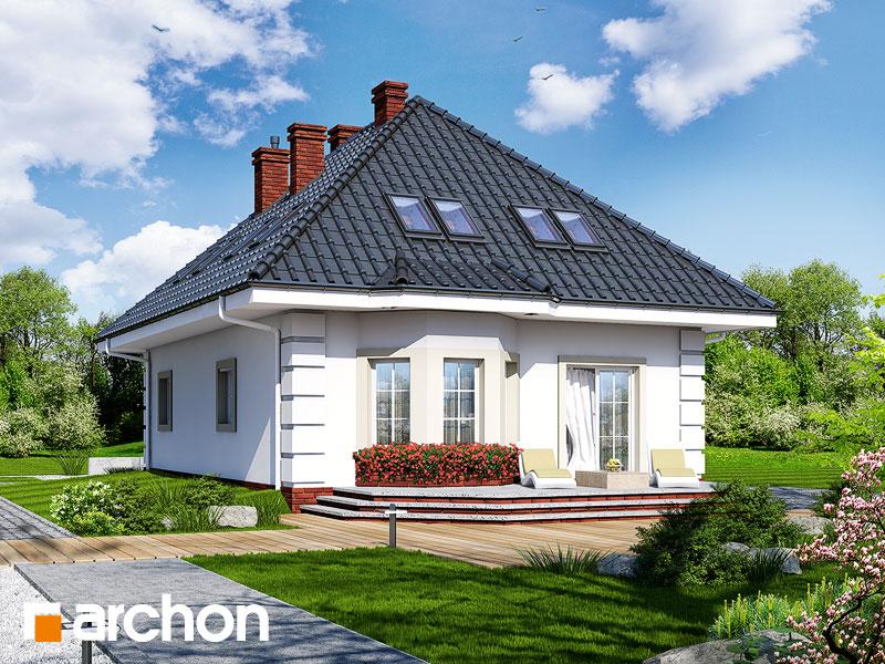 gotowy projekt Dom w aksamitkach (M) widok 1