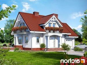 projekt Dom w kosówce lustrzane odbicie 1