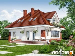 projekt Dom w koniczynce 3 lustrzane odbicie 2