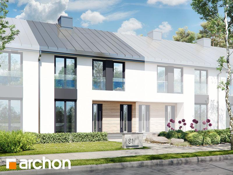 gotowy projekt Dom w bratkach 16 (R2S) widok 1
