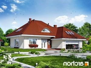 projekt Dom w arbuzach lustrzane odbicie 1