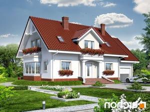 projekt Dom w kaliach 2 lustrzane odbicie 1