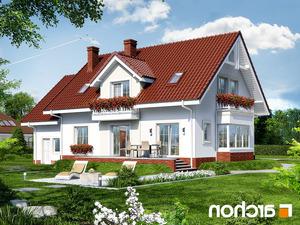 projekt Dom w kaliach 2 lustrzane odbicie 2