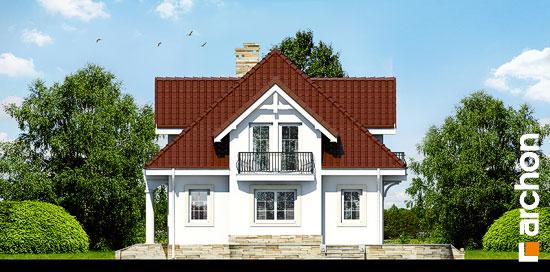 Elewacja boczna projekt dom w werbenach 3  265