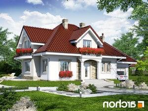 projekt Dom w werbenach 3 lustrzane odbicie 1