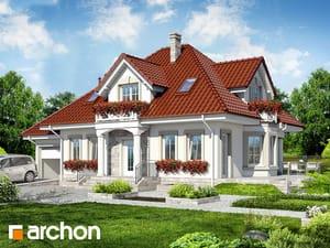 projekt Dom w lewkoniach (P)