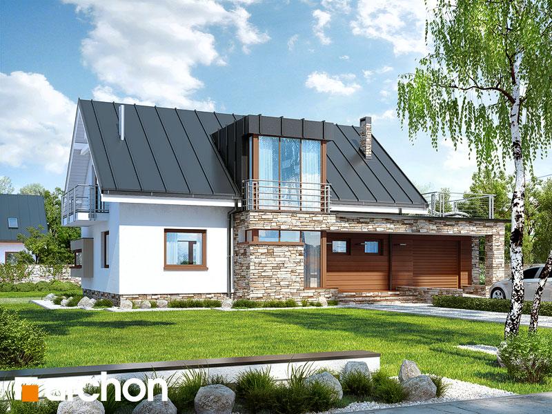gotowy projekt Dom pod ambrowcem widok 1