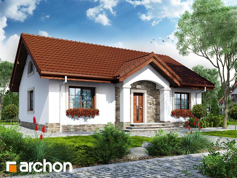 gotowy projekt Dom w gazaniach widok 1