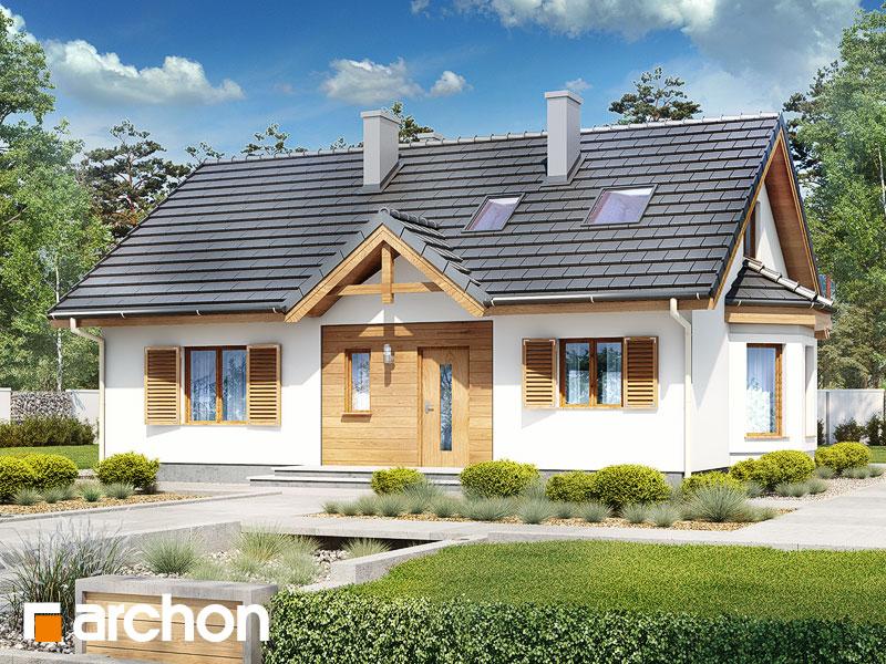 gotowy projekt Dom w jeżynach 2 (PD) widok 1