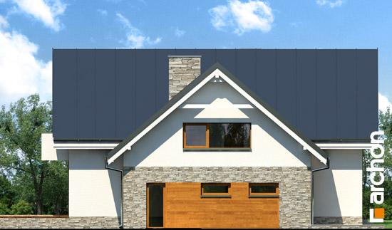 Elewacja boczna projekt dom w tabasko  265