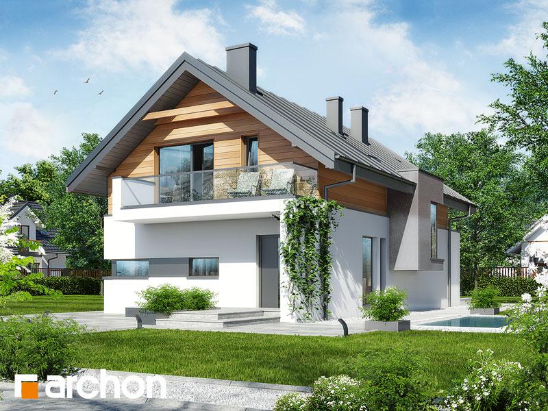 gotowy projekt Dom w moringach widok 1