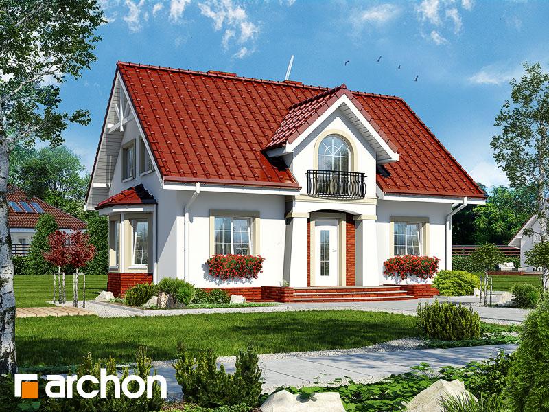 gotowy projekt Dom w kolendrze (P) widok 1