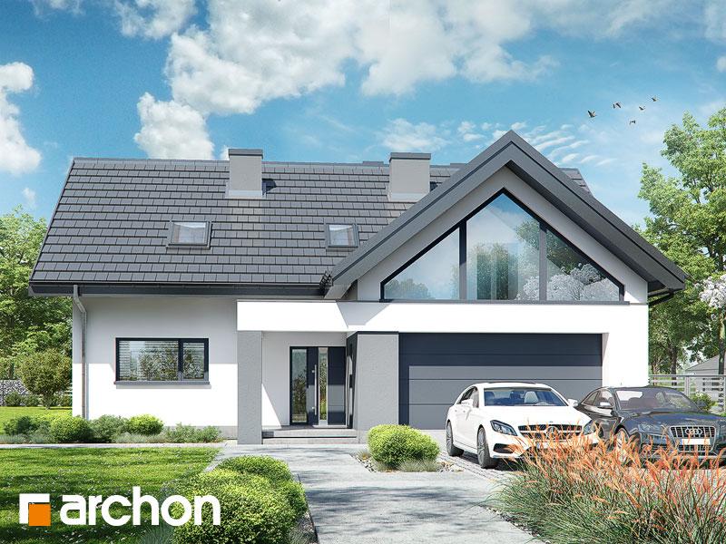 gotowy projekt Dom w albicjach (G2) widok 1