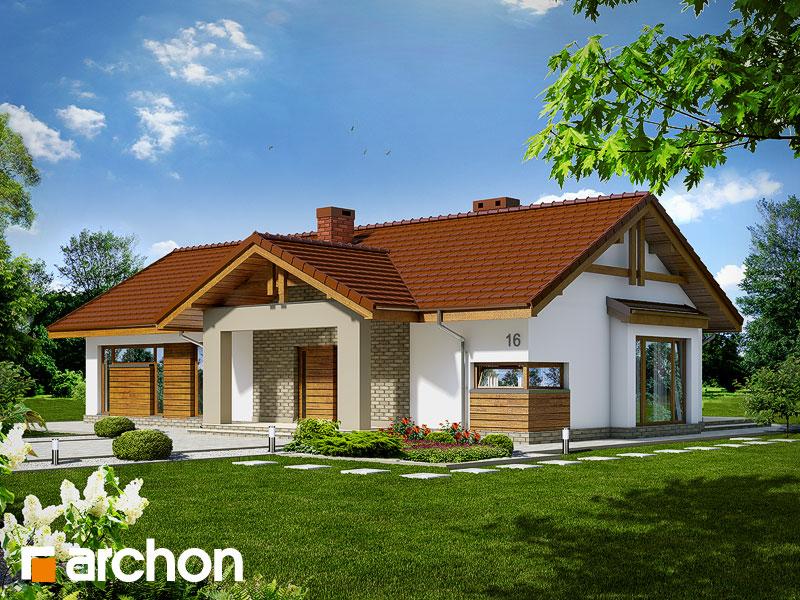 gotowy projekt Dom w toreniach widok 1