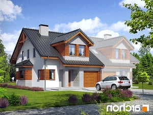 projekt Dom w klematisach 9 (B) lustrzane odbicie 1