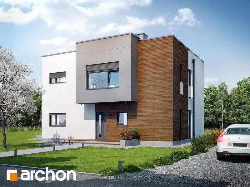 gotowy projekt Dom w krotonach widok 1