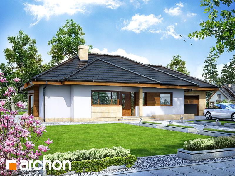gotowy projekt Dom w modrzykach widok 1