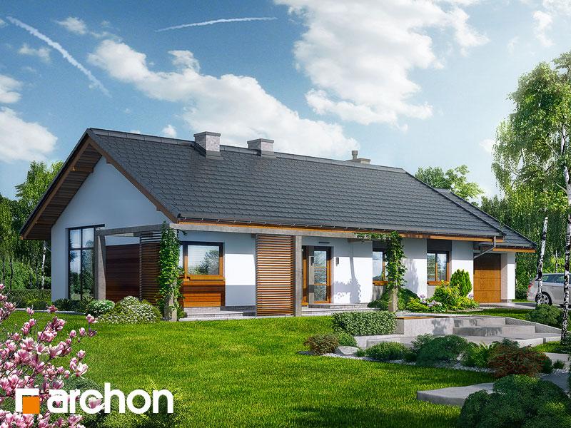 gotowy projekt Dom w mekintoszach widok 1