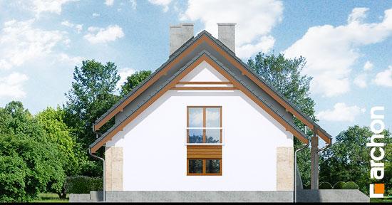 Elewacja boczna projekt dom w filodendronach  265