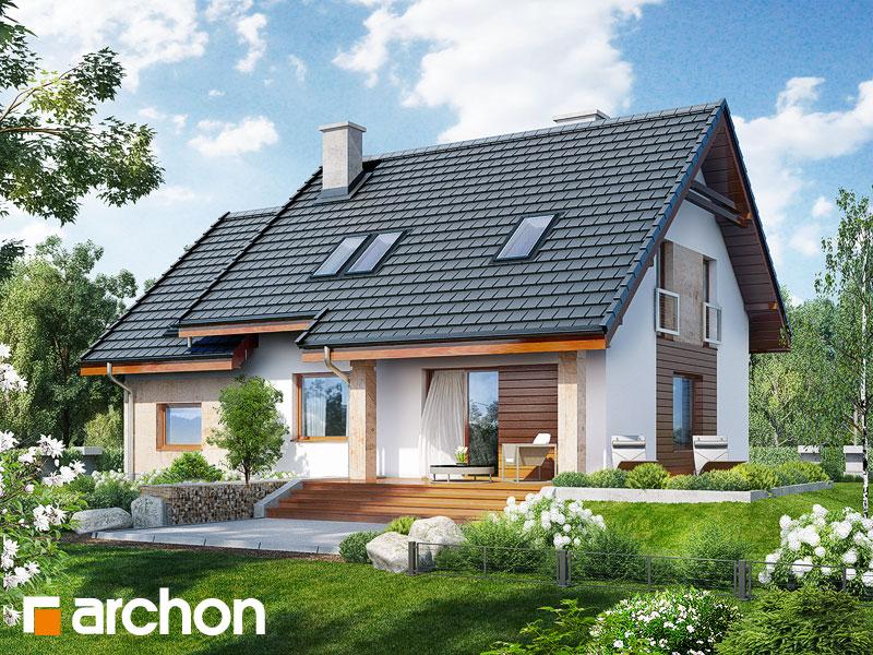 gotowy projekt Dom w filodendronach widok 1
