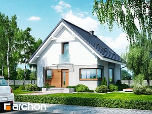 gotowy projekt Dom w rododendronach 11 (N)