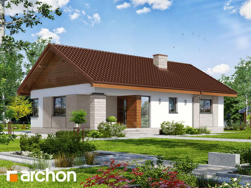 gotowy projekt Dom w owocolistkach widok 1