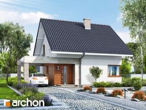 projekt Dom w lipcówkach