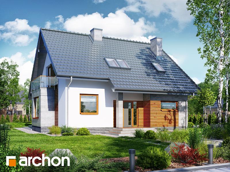 gotowy projekt Dom w filodendronach (W) widok 1