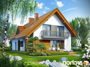 projekt Dom w goldenach lustrzane odbicie 2
