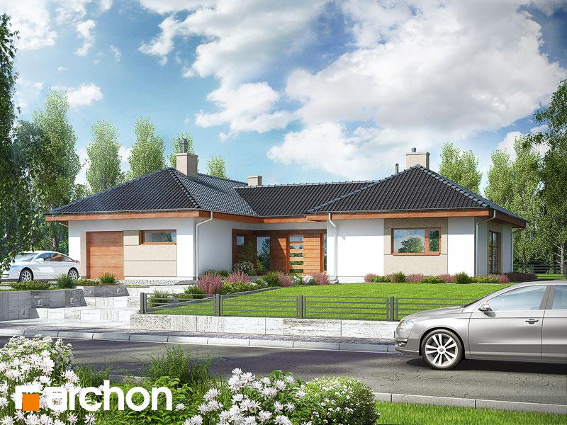 gotowy projekt Dom w kampanulach widok 1