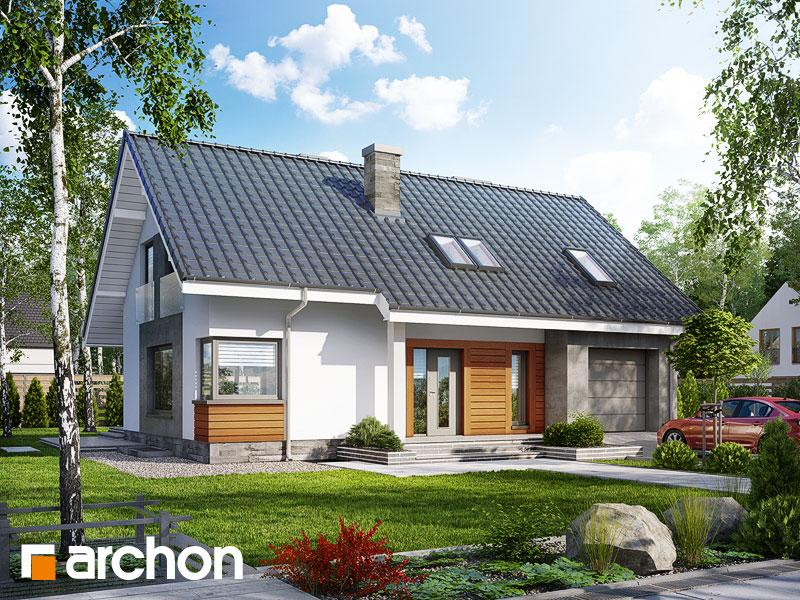 gotowy projekt Dom w złoci (P) widok 1