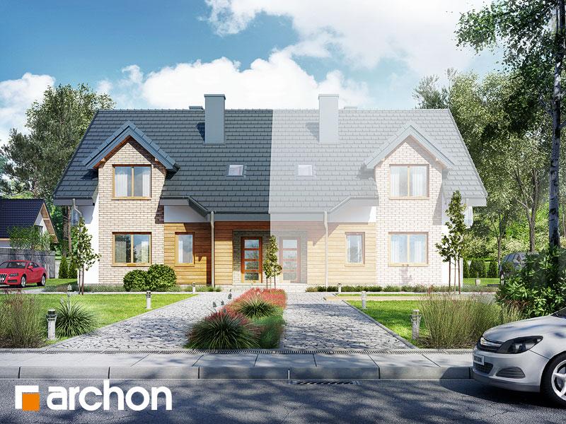 gotowy projekt Dom wśród malin (A) widok 1