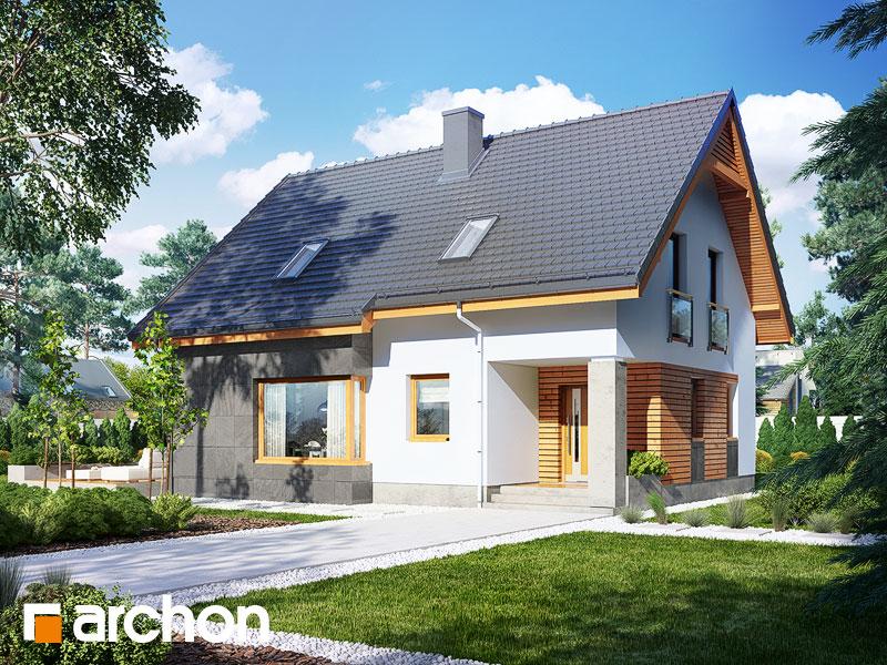gotowy projekt Dom w mandarynkach (N) widok 1