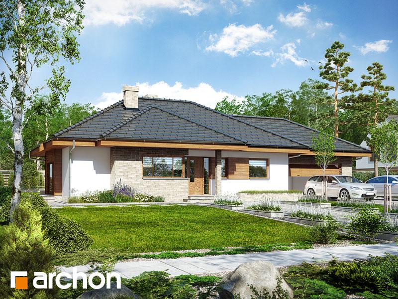 gotowy projekt Dom w modrzykach (G2) widok 1