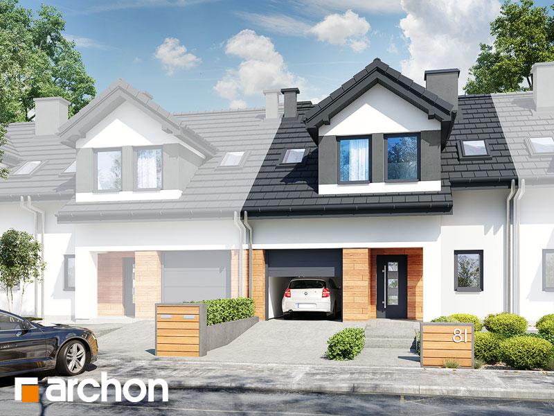 gotowy projekt Dom w klematisach 19 (S) widok 1