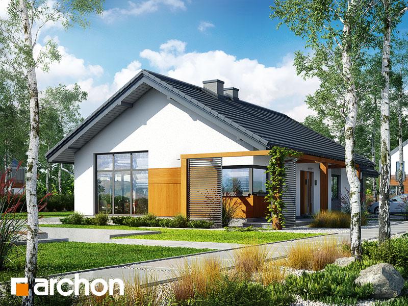 gotowy projekt Dom w mekintoszach 2 widok 1
