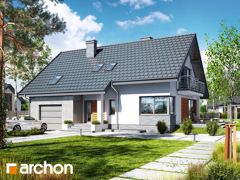 projekt Dom w idaredach 4 (P) widok 1