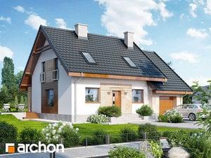 gotowy projekt Dom w filodendronach (M)