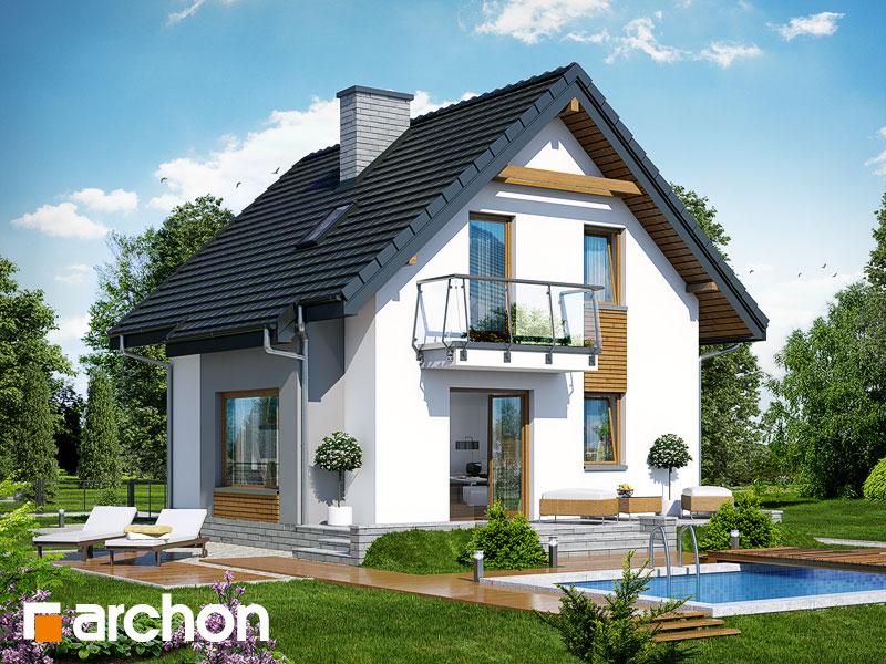 gotowy projekt Dom w winogronach (PN) widok 1