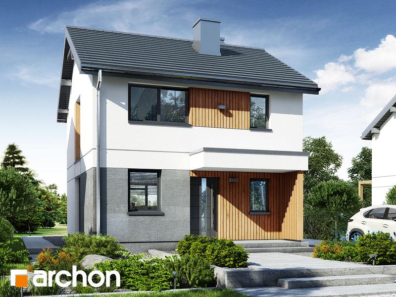 gotowy projekt Dom w modrakach widok 1