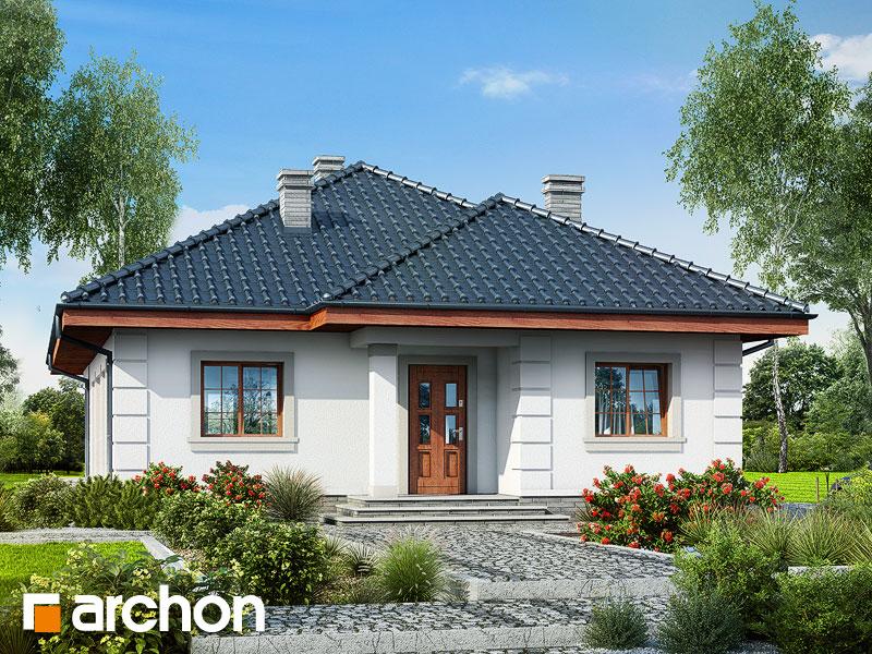gotowy projekt Dom w imbirze widok 1