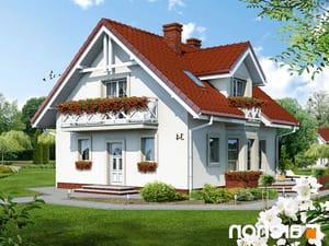 projekt Dom w rododendronach lustrzane odbicie 1