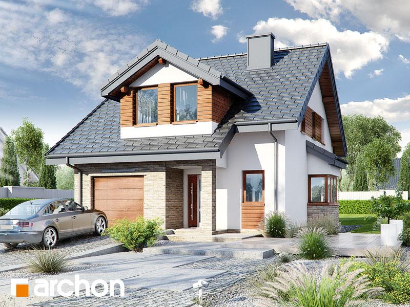 gotowy projekt Dom w dmuchawcach (N) widok 1