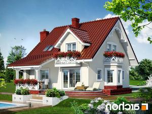 projekt Dom w tamaryszkach 4 lustrzane odbicie 2