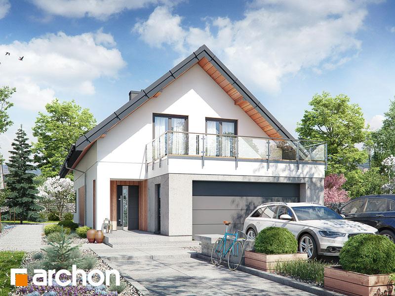 gotowy projekt Dom w aroniach 2 (G2) widok 1